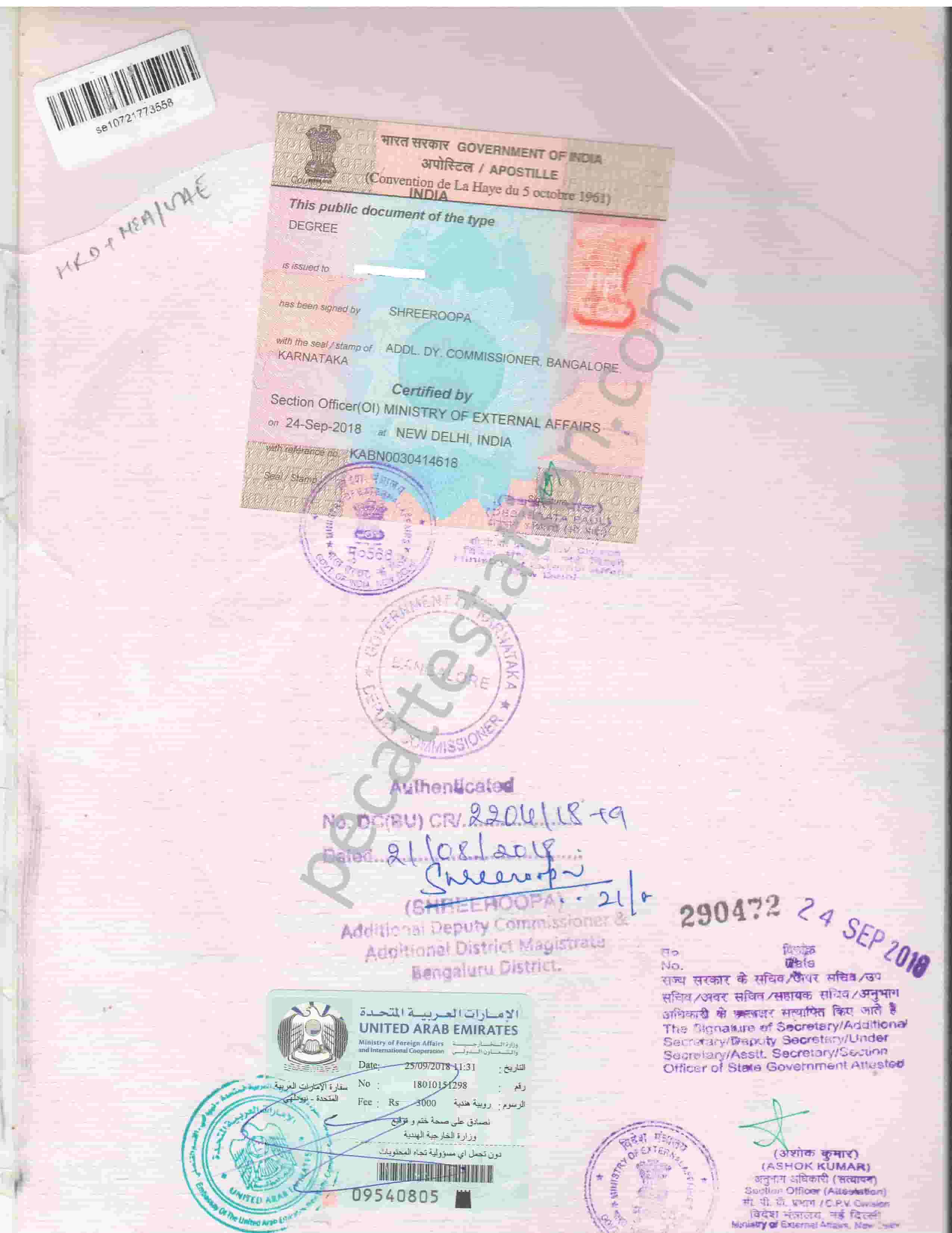 Educational certificate degree certificate attestation